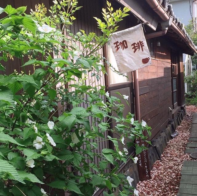 人生の楽園niwasaki cafeいわさ喜さいたま市の場所やおすすめメニューは?【庭先カフェ】